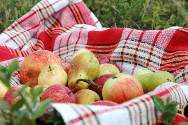 De appelen en de peren leggen op een handdoek royalty-vrije stock fotografie