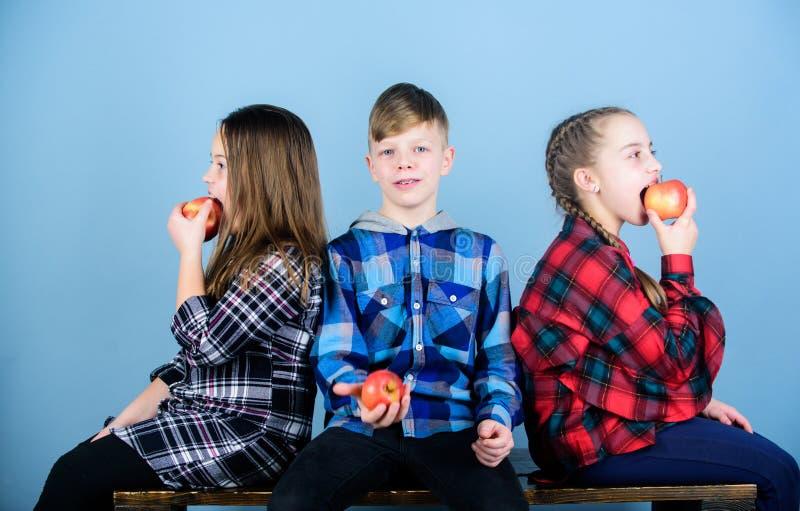De appelen zijn sommige gezonde traktaties Leuke kinderen die van smakelijke sappige appelen genieten Kleine kinderen die rode ap royalty-vrije stock afbeeldingen
