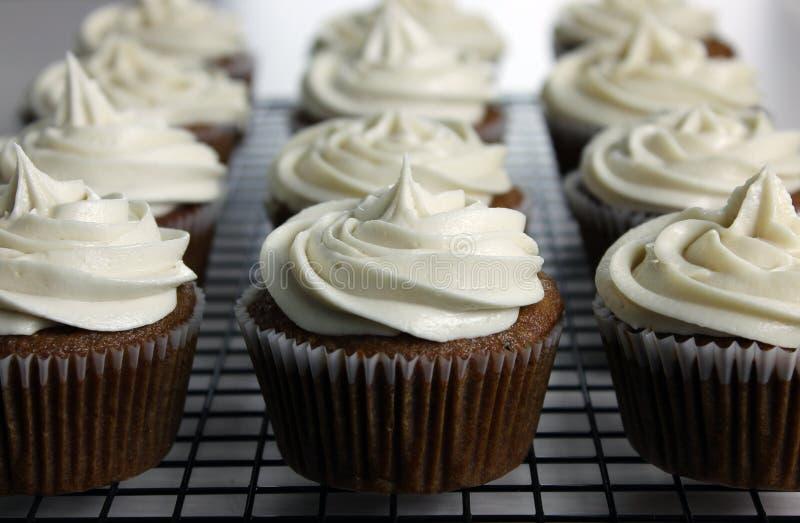 De Appelmoes Cupcakes van de veganist stock foto