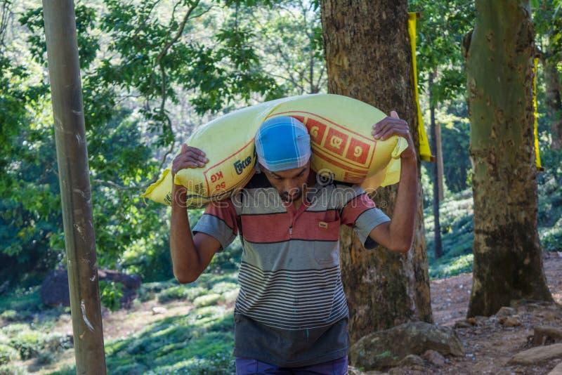 De arbeider draagt een zware zak op zijn schouders stock afbeelding