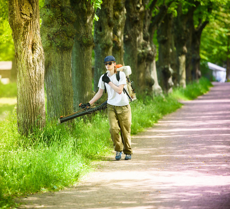 De arbeider-mens verwerkt een park tegen oogstmijt en parasieten royalty-vrije stock fotografie