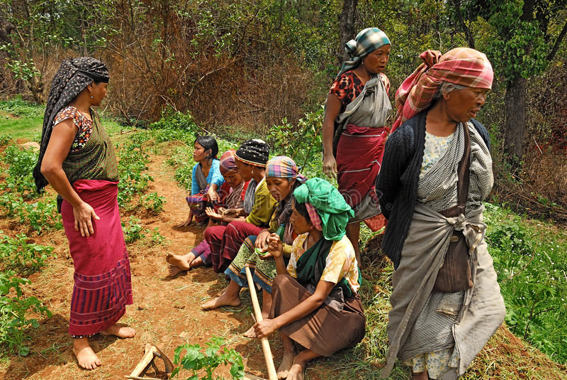De arbeider van vrouwen in Noordoostelijk India royalty-vrije stock foto