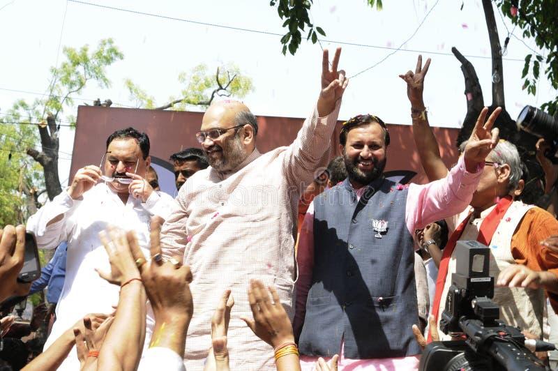 De arbeiders die van de Bjppartij tijdens de verkiezing in India vieren royalty-vrije stock fotografie