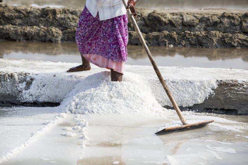 De arbeiders van de close-up het Niet geïdentificeerde vrouw verbeteren, die het zout, op grote zoute gebieden, handarbeid, biolo stock foto
