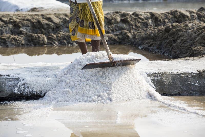 De arbeiders van de close-up het Niet geïdentificeerde vrouw verbeteren, die het zout, op grote zoute gebieden, handarbeid, biolo stock foto's