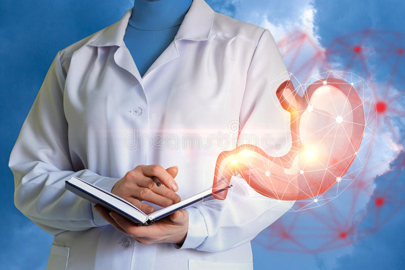De arts onderzoekt de menselijke maag stock afbeelding