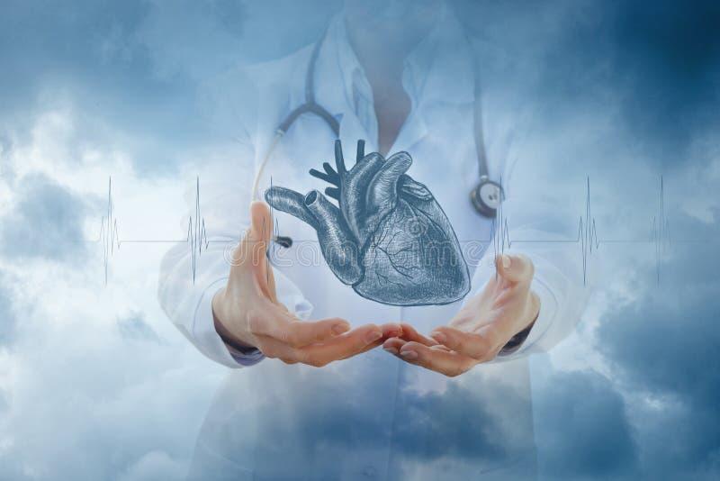 De arts toont het hart van de handenschets royalty-vrije stock foto's