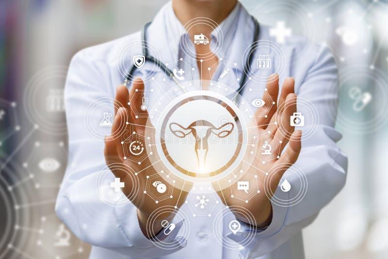 De arts toont het pictogram van de vrouwelijke baarmoeder royalty-vrije stock foto's