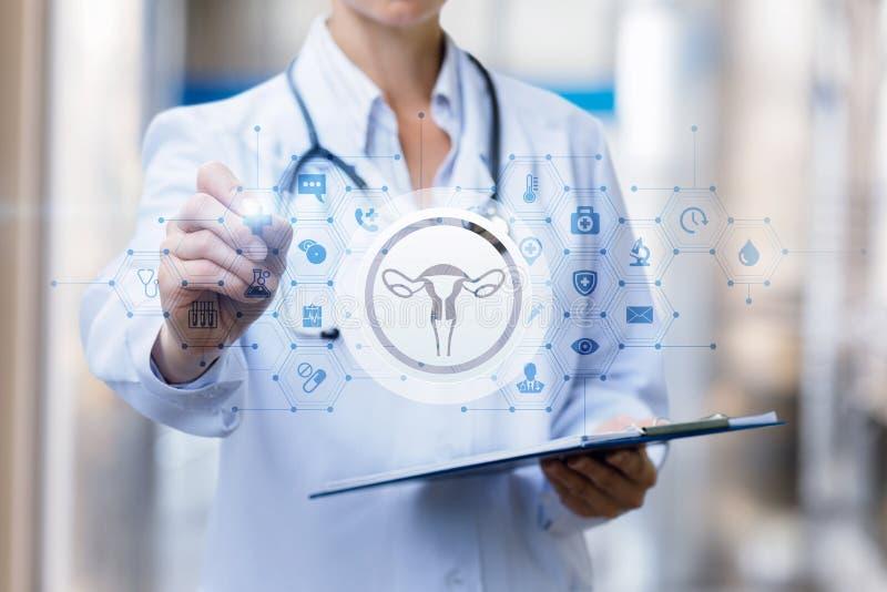 De arts trekt een behandelingsregime van de vrouwelijke baarmoeder royalty-vrije stock foto's