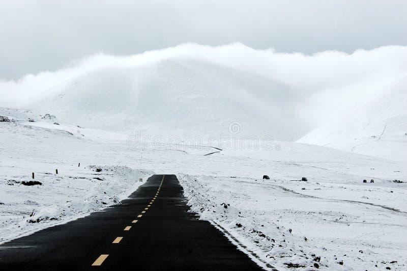 De asfaltweg in de sneeuw royalty-vrije stock afbeelding