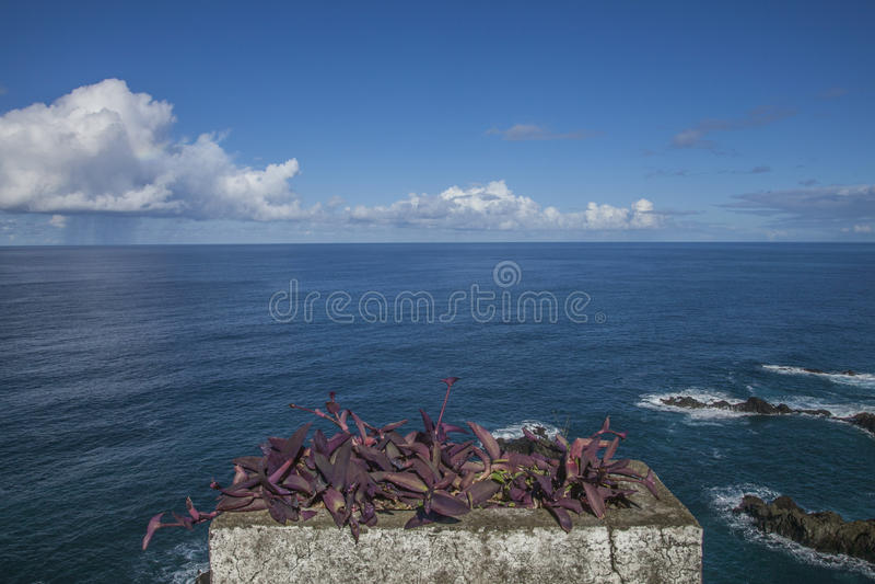 De Atlantische Oceaan, Porto Moniz, Madera, Portugal stock foto's