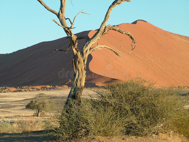 De Atmosfeer van de woestijn in Namibië stock afbeelding