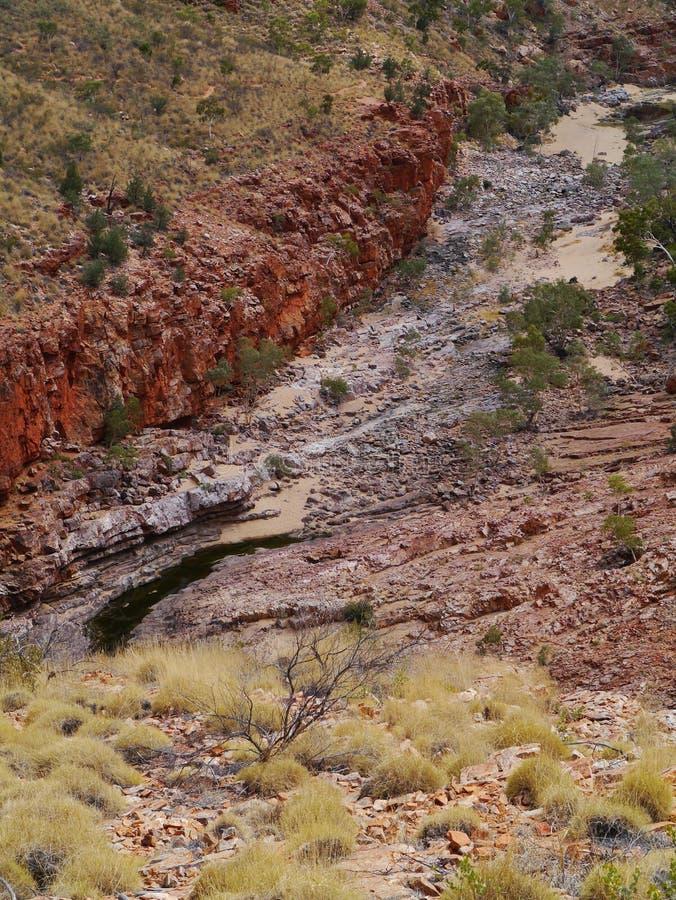 De Australische waaiers van het Westenmcdonnell stock afbeelding