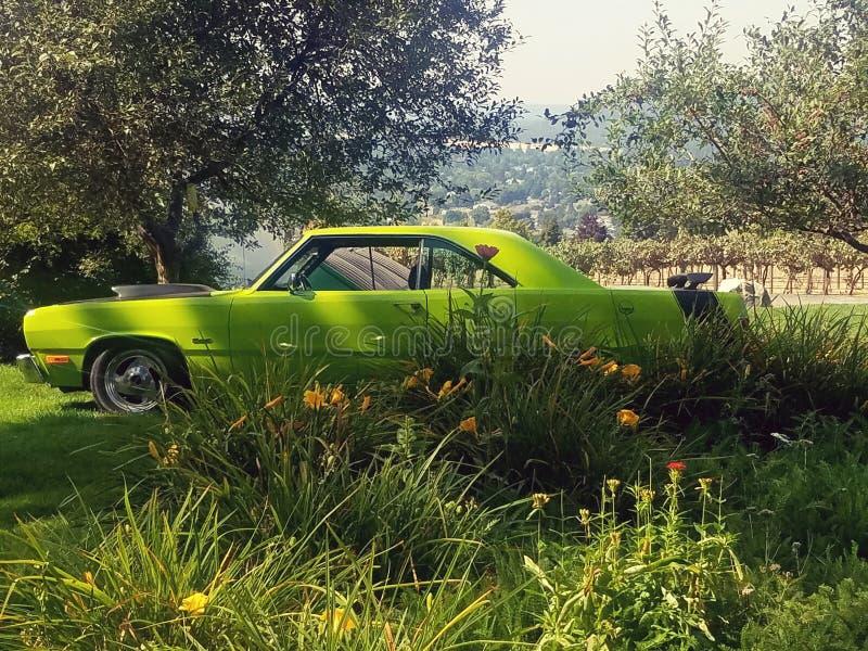 De auto van de zomerdagen toont antiquiteiten stock fotografie