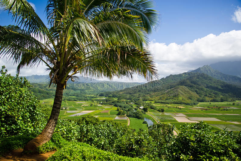 De Avond van de Vallei van Hanalei, Kauai royalty-vrije stock foto's