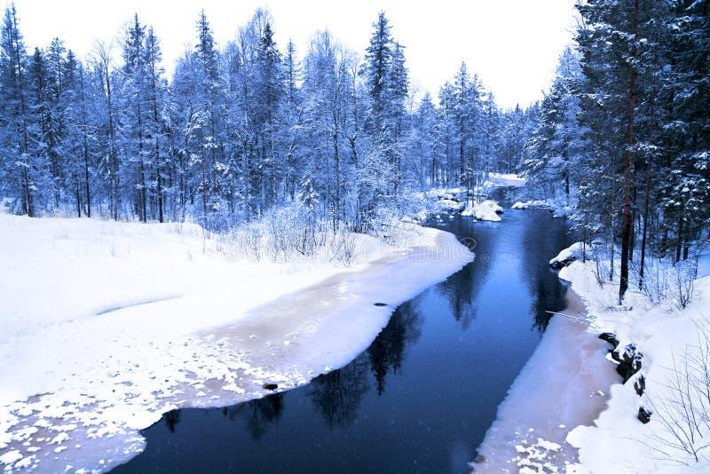 De avond van de winter in diep bos met rivier royalty-vrije stock fotografie