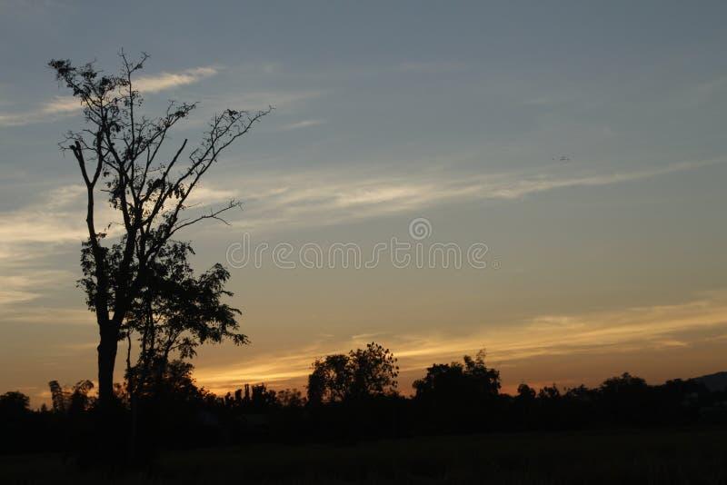 De avondatmosfeer royalty-vrije stock foto