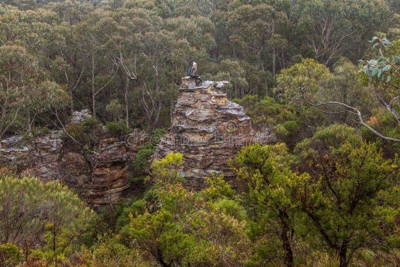De avontuurlijke vrouwelijke wandelaar beklom omhoog op rotsachtige toren in berg bushland stock foto's