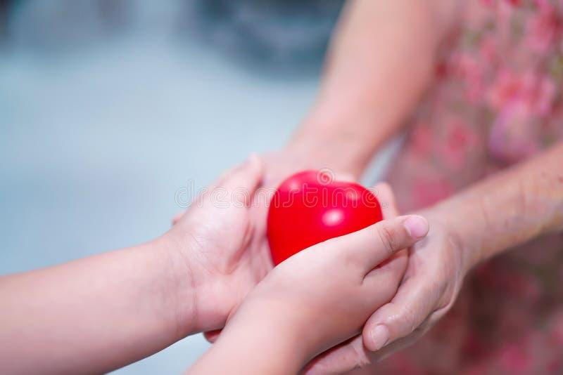 De Aziatische de greepaanraking van het kinderenjonge geitje en geeft rood hart sterke gezondheid aan de oude handen van de moede royalty-vrije stock foto's