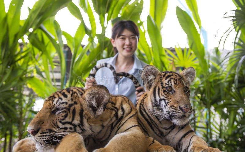 De Aziatische jonge vrouw vangt de tijgerstaart royalty-vrije stock foto's