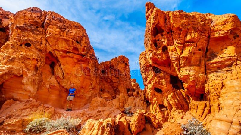 De Azteekse vormingen van de zandsteenrots in de Vallei van het Park van de Brandstaat in Nevada, de V.S. stock afbeeldingen