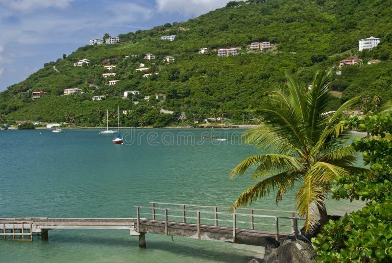 De Baai van de Tuin van het riet in Tortola stock afbeeldingen