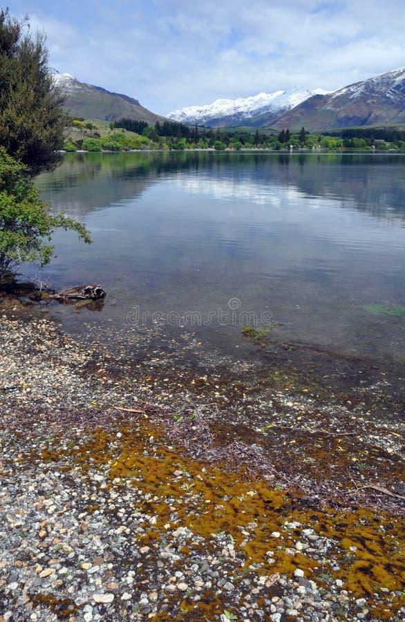 De Baai van Glendhu, Meer Wanaka Nieuw Zeeland royalty-vrije stock foto