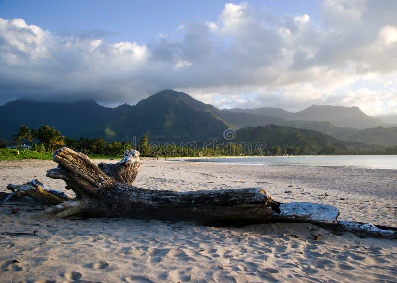 De Baai van Hanalei, Kauai royalty-vrije stock foto