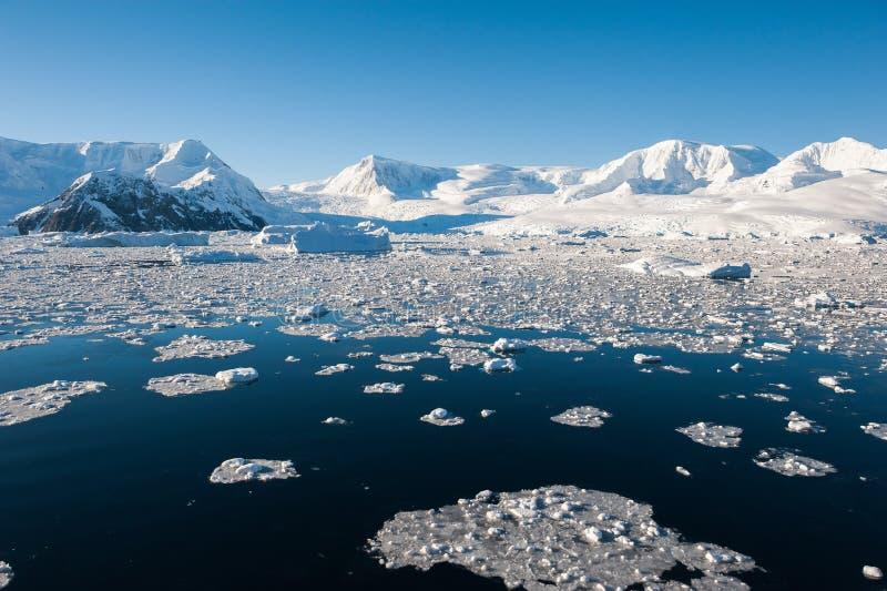 De baai van het paradijs in Antarctica royalty-vrije stock foto's