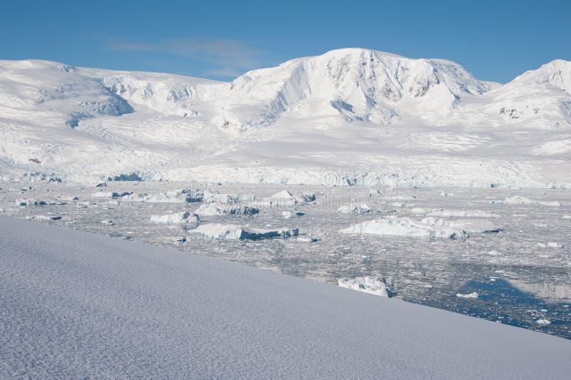 De baai van het paradijs in Antarctica royalty-vrije stock foto