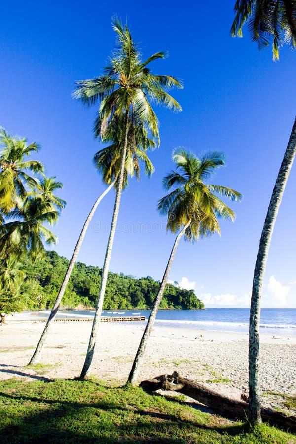 De Baai van Maracas, Trinidad stock fotografie