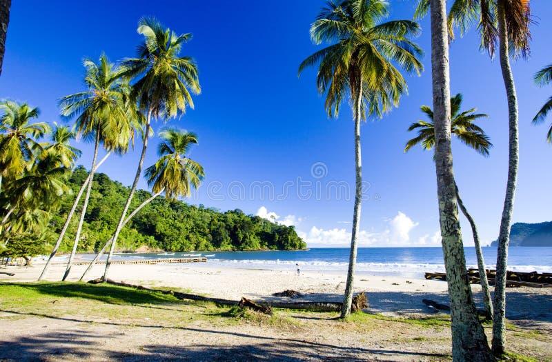 De Baai van Maracas, Trinidad royalty-vrije stock foto's
