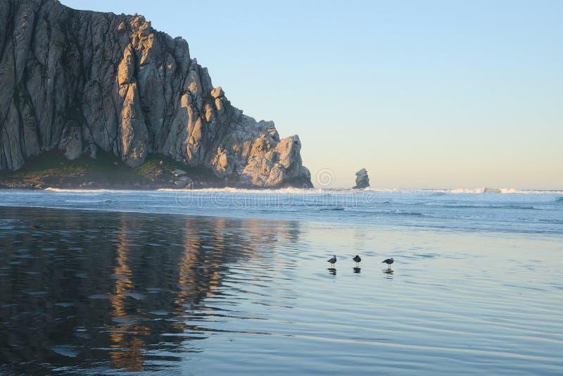 De Baai van Morro stock afbeeldingen