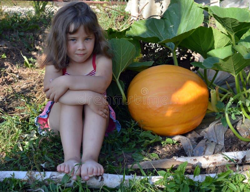De baby, meisje, de zomer, tuin, Zonnige dag, oranje gele groenten, pompoen, groot gewas, de installatiegroei, sluit omhoog, warm royalty-vrije stock afbeeldingen