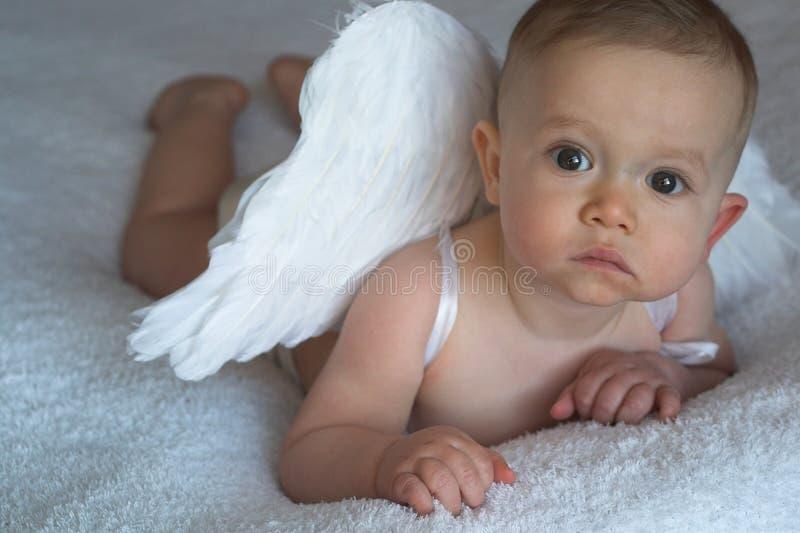 De Baby van de engel royalty-vrije stock afbeeldingen
