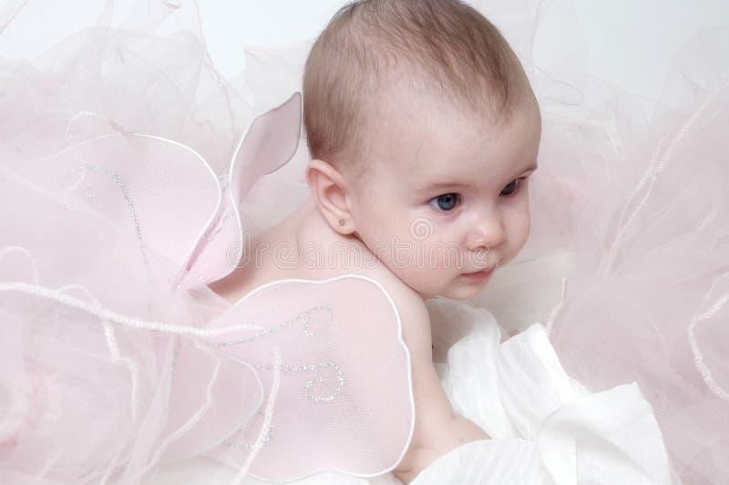 De Baby van de vlinder royalty-vrije stock afbeeldingen