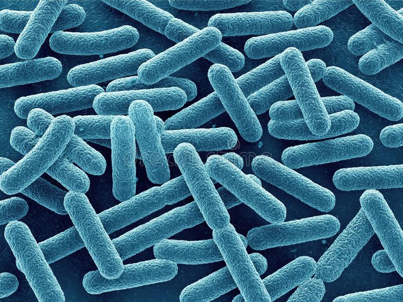 De bacteriën sluiten omhoog stock illustratie