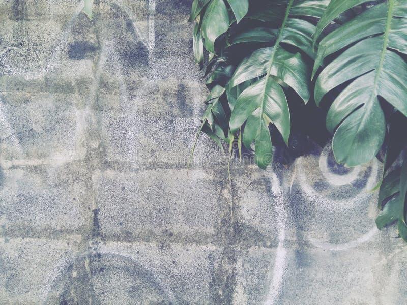 De bakstenen muur is grijs stock fotografie