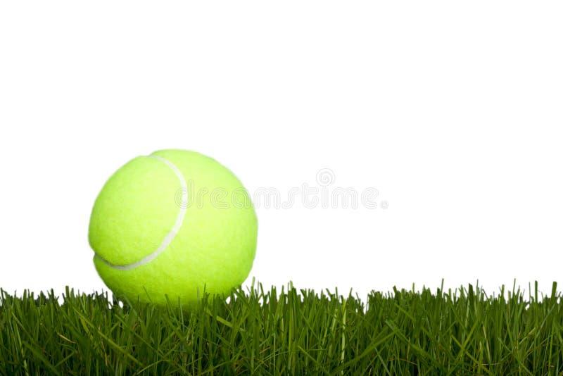 De bal & het gras van het tennis royalty-vrije stock fotografie