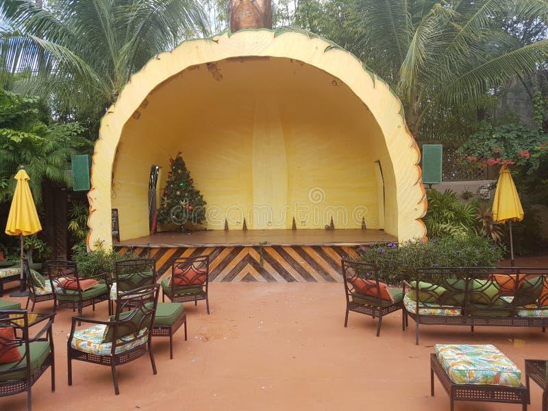 De bal van het ananasstadium en ketent Weinig Havana Miami stock foto