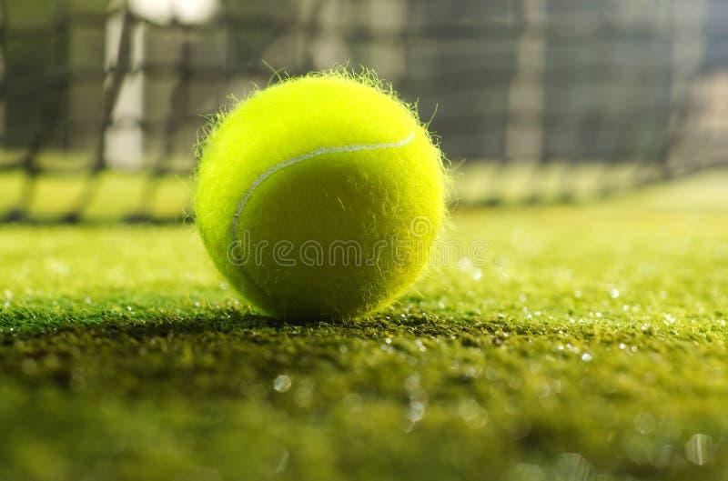 De bal van het tennis royalty-vrije stock foto's