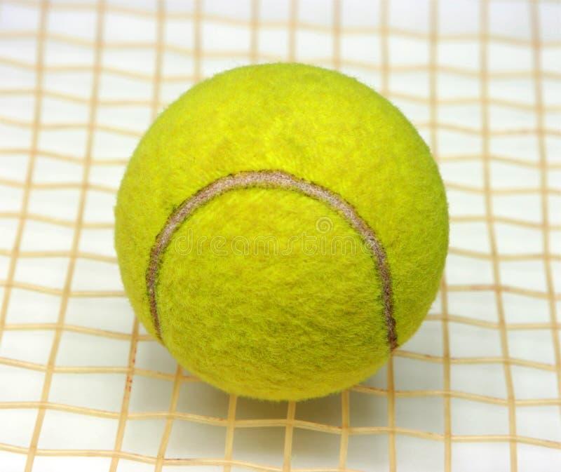 De bal van het tennis op de racket royalty-vrije stock afbeelding