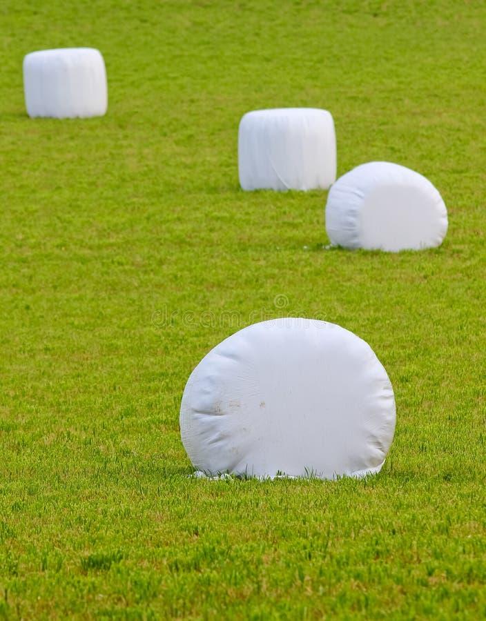 De balen van het stro die in plastiek worden verpakt stock afbeelding