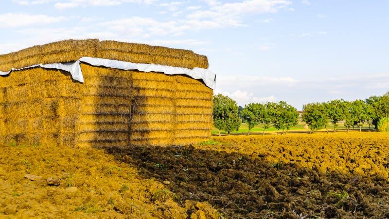 De balen van hooi worden gestapeld op een gebied in Toscanië, Italië stock fotografie