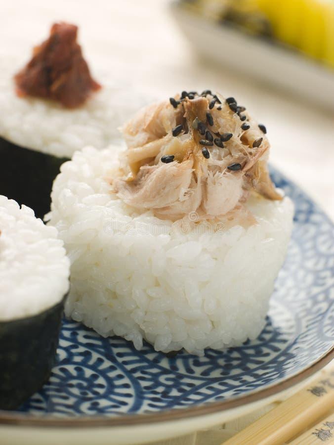 De Ballen van de Rijst van sushi met Gerookte Makreel en Ameboshi stock foto's