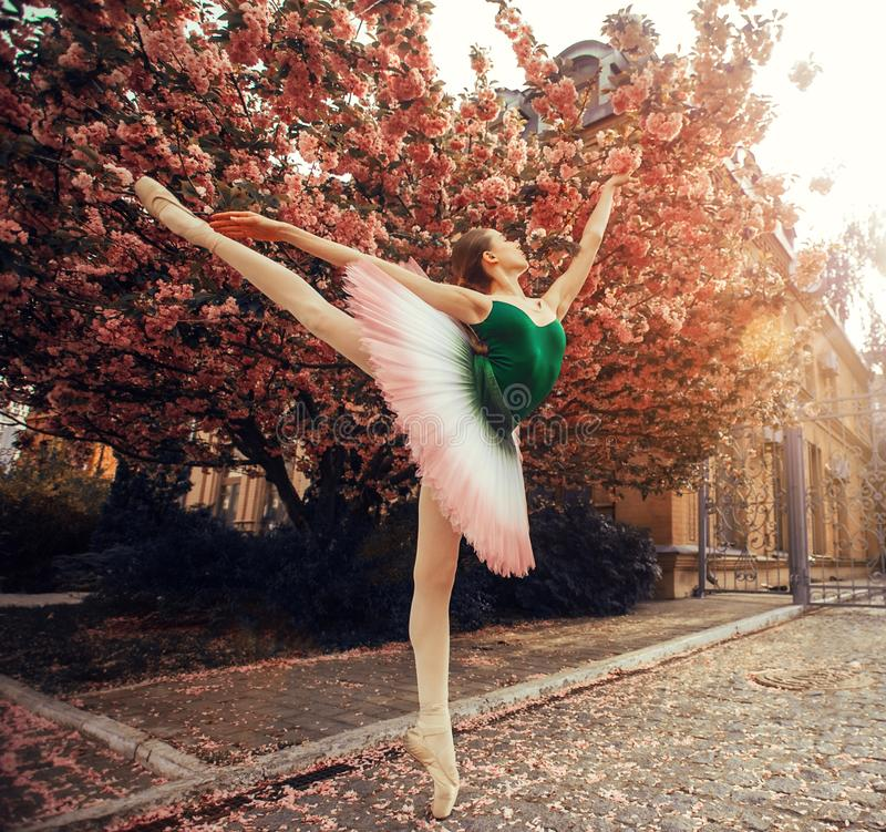 De ballerina die zich in arabesque bevinden stelt tegen de achtergrond van bloeiende sakurabomen royalty-vrije stock foto