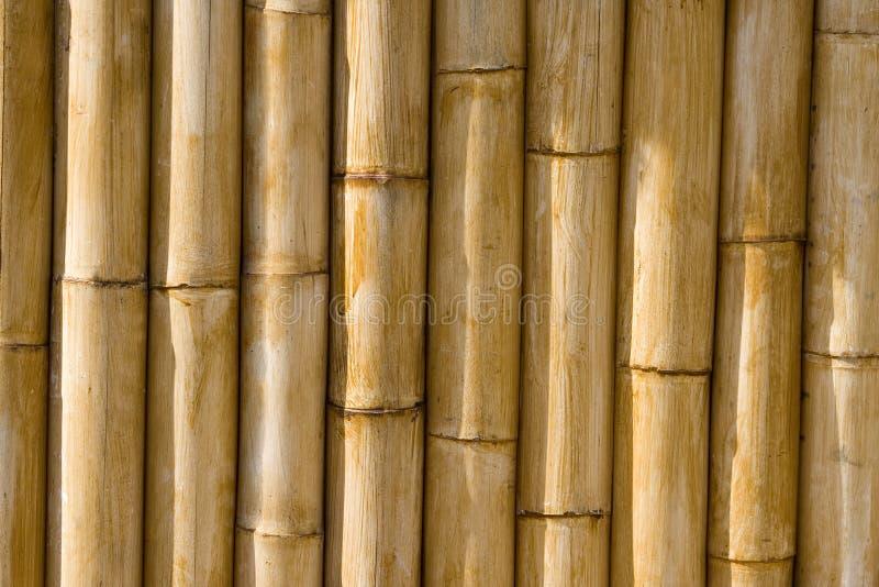 De bamboetextuur van uitstekende kwaliteit stock foto