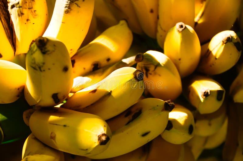 De banaan is een fruit Dat zal niet waarschijnlijk niet veel energie hebben stock fotografie