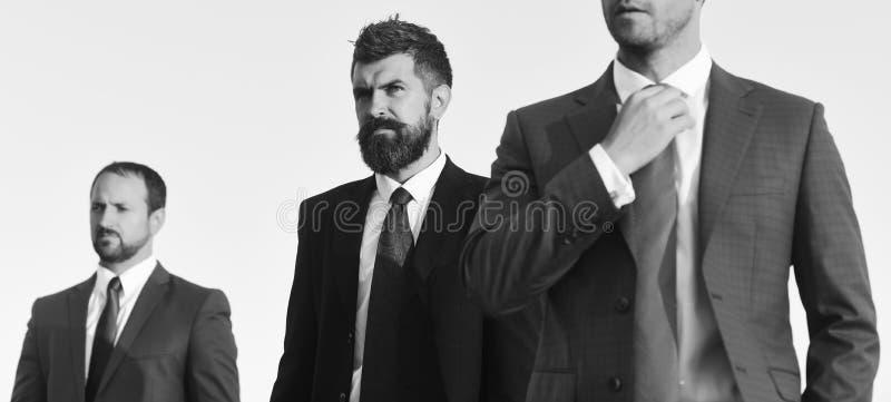 De band van zakenmanaanrakingen De mensen met baard en de ernstige gezichten zien vooruit eruit, bespreken plan De managers drage stock foto