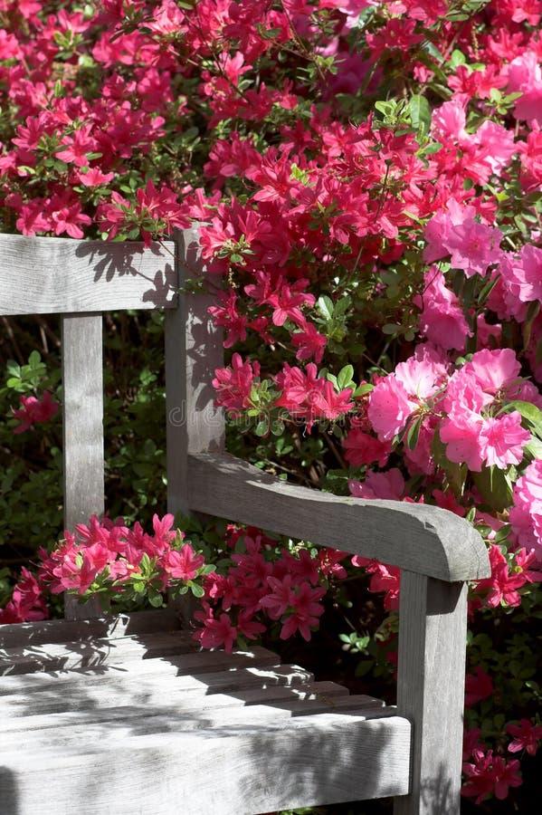 De bank en de bloemen van de tuin stock fotografie